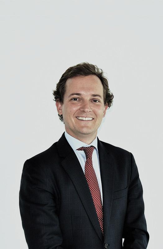 Jaime del Palacio Tornos)